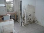 Verschimmelte Wände